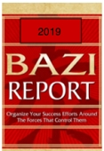 2019 Bazi Report (Returning Clients Only)