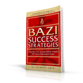 BaZi Success Strategies