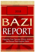 Bazi 2018 Report  & Online Tutorial