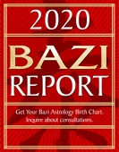 2020 Bazi Report (New Clients Only)